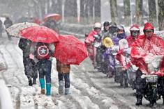 暴雪潮湿,暴雪!
